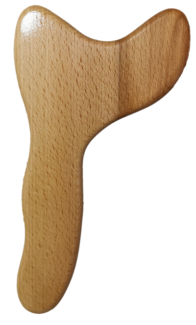 Model1-6